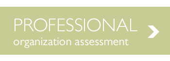 Free Professional Organization Assessmen